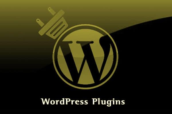 WordPress Plugin Support