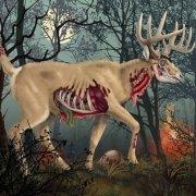 Zombie deer